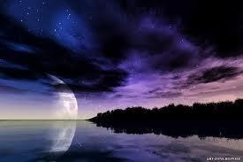noapte poza