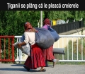 tiganci_care_pleaca