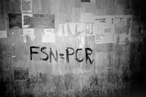 fsn-pcr