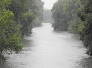 delta-dunarii-in-ploaie-poza-4-40434x1024